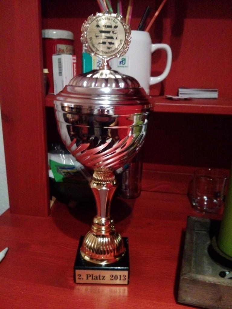 2013-11-24 2. hessische Pokal